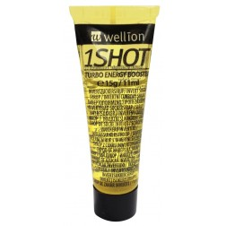 Wellion 1 Shot Invertzucker, 15 g, 1 Stück